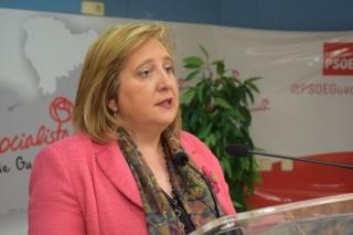 Los parlamentarios socialistas piden reunirse con el ministro de Fomento para exigir soluciones al caos de  Cercanías
